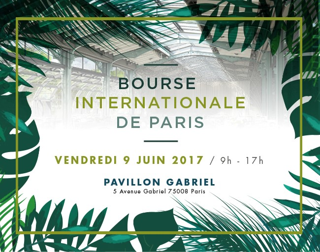 BOURSE INTERNATIONALE DE PARIS